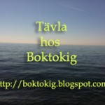 tavla_boktokig