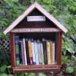 Gratis bibliotek i miniformat