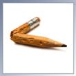 Skrivkrampens och fibromyalgins förbannelse